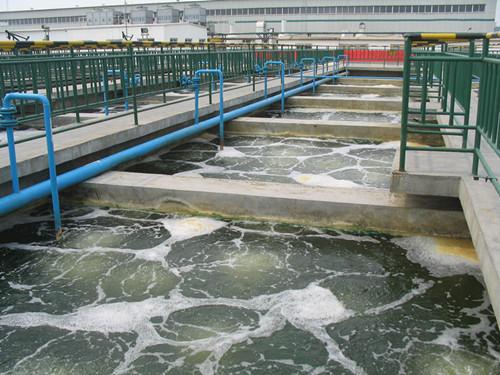 河北辛集皮业公司--皮革废水污泥输送泵