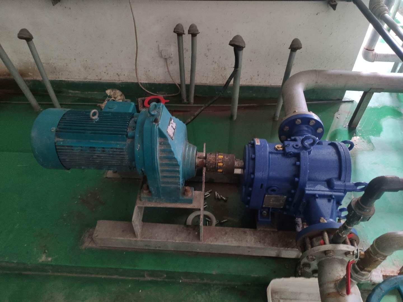 粪便污泥泵采用罗德转子泵替代进口泵