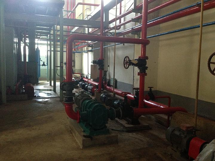 青岛转子泵应用---海藻泥输送泵