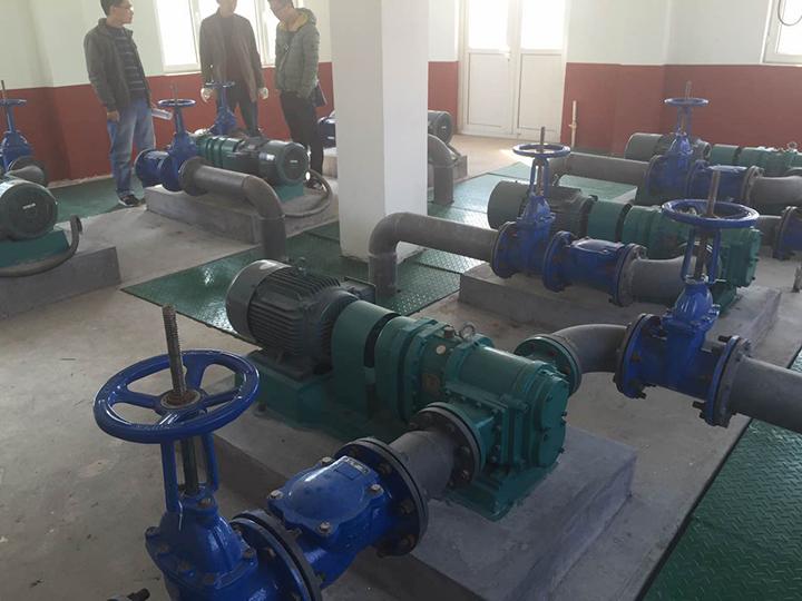 青岛罗德--专业的含油污水提升转子泵生产厂家