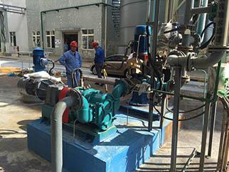珠海转子泵应用---发电厂污泥转子泵