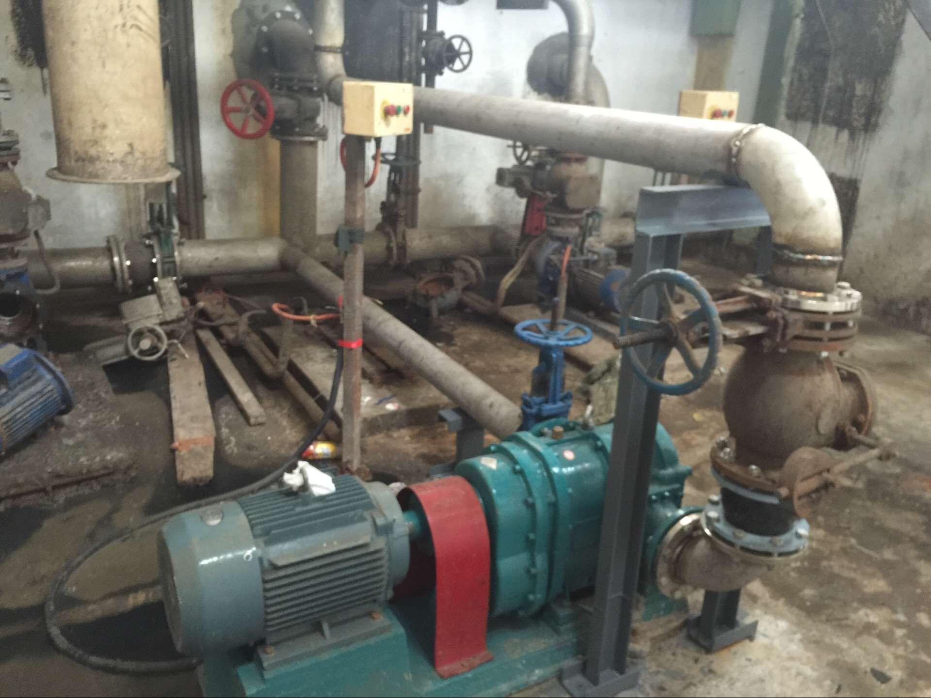罗德凸轮转子泵青岛应用案例—剩余污泥转子泵