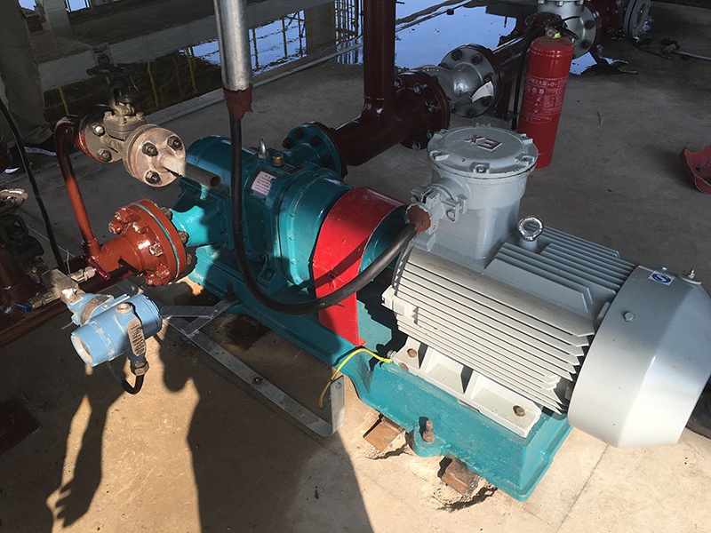 盛虹石化甲醇卸车泵