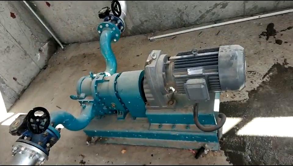 烟台橡胶转子泵应用-龙大集团污水厂