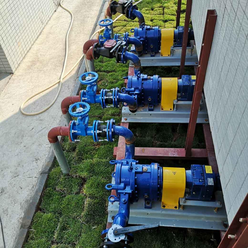 广东污泥转子泵应用案例-污泥自吸泵