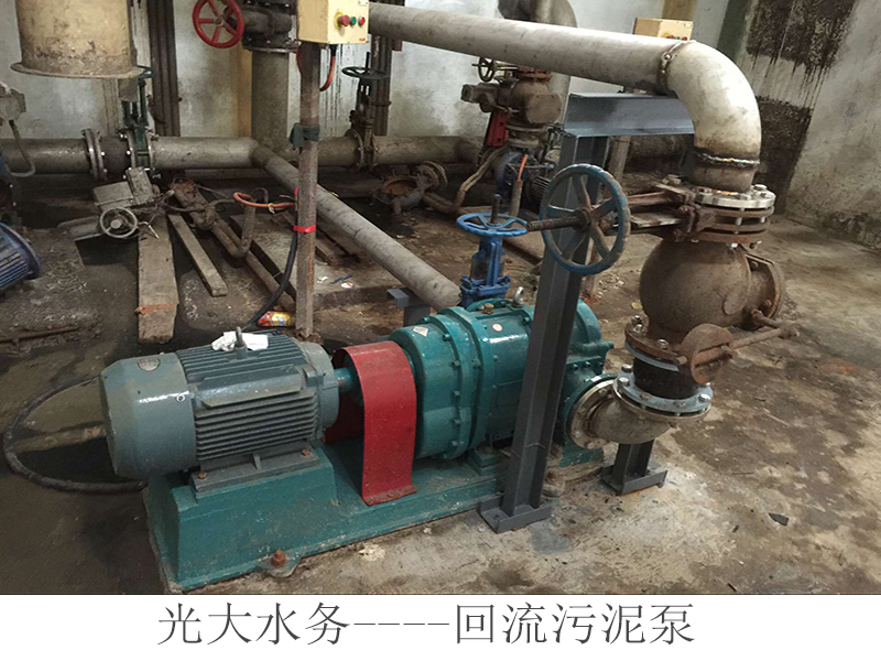 污泥转子泵