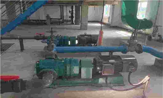 罗德浓缩污泥转子泵