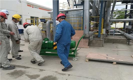 罗德手推车式转子泵